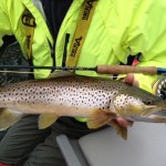 Nice Cowichan River brown trout caught with the Requiem Reel